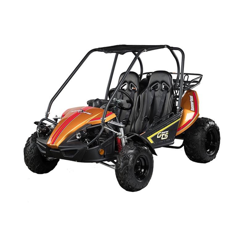 dune buggy wiring systems better wiring diagram onlinehammerhead dune buggy wiring harness wiring schematic diagramgts 150™ hammerhead off road dune buggy wiring
